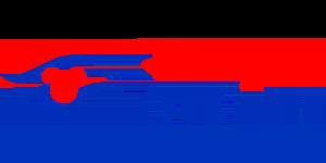 logo-disney-cruise